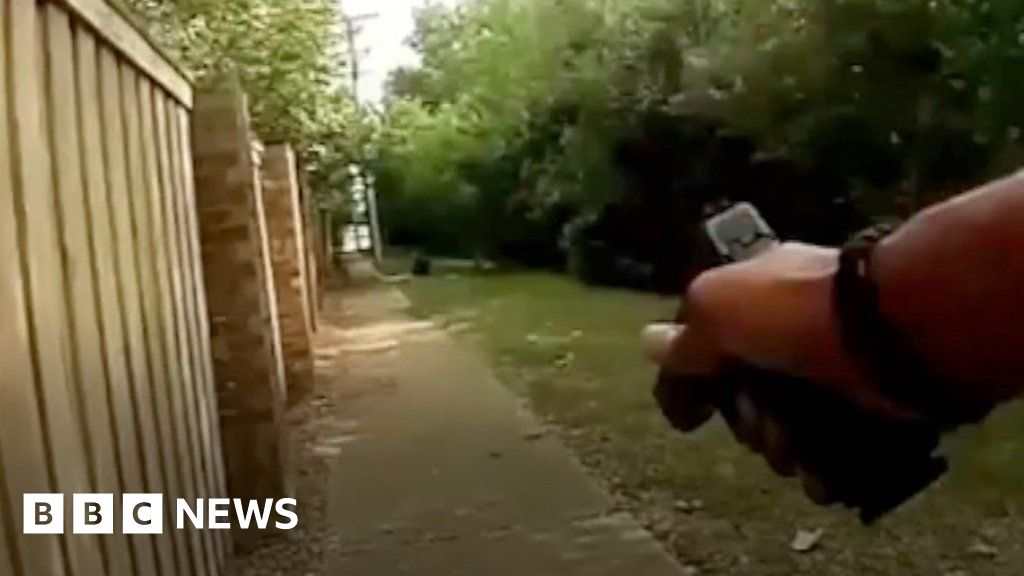Woman killed as US officer fires at dog