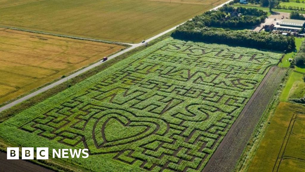Giant NHS 'thank you' created in maize maze