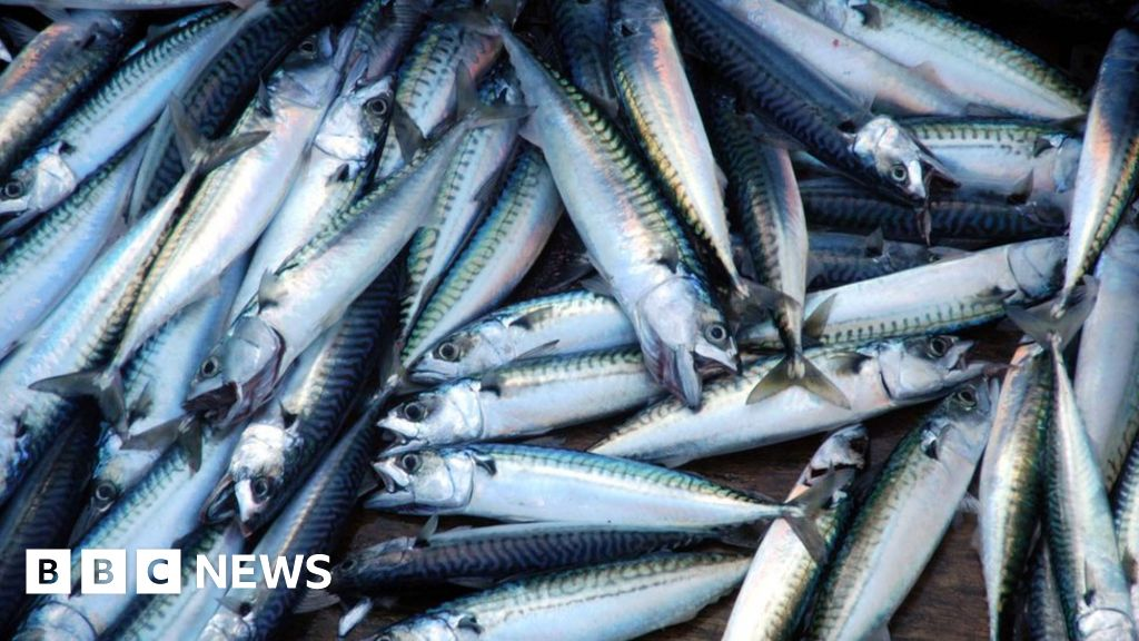 Brexit: Irish fishing fleet stages protest over EU-UK trade deal