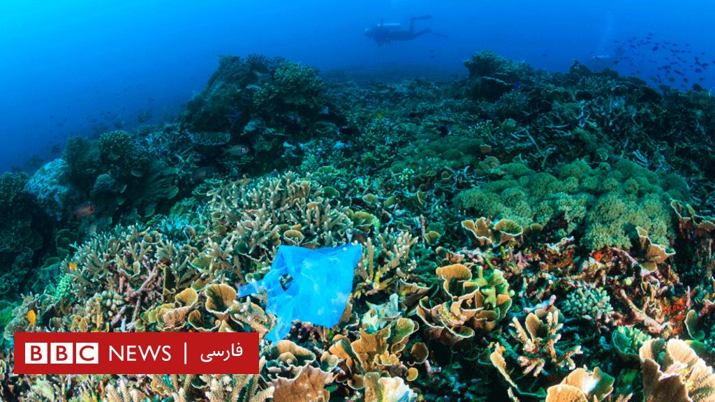قطعنامه جلوگیری از ورود زباله پلاستیکی به اقیانوس ها امضا می شود