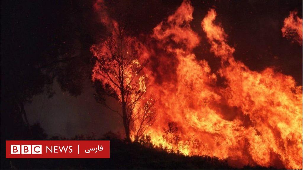 آتشسوزی استرالیا پدیدهای 'عادی' در جهان خواهد شد