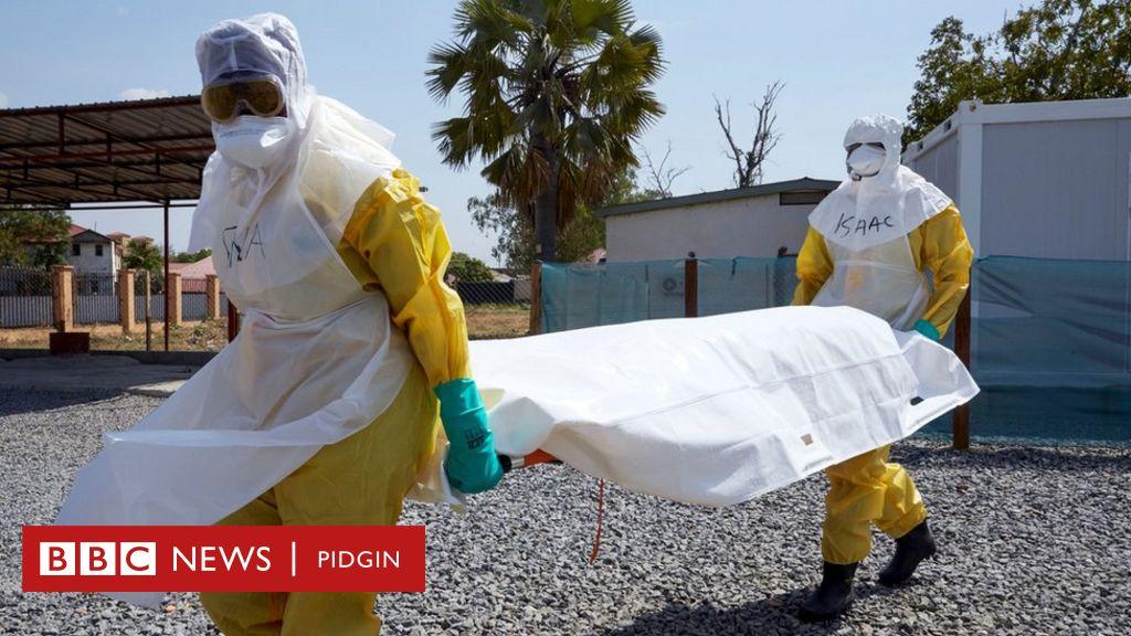 Ebola no dey Nigeria - FG