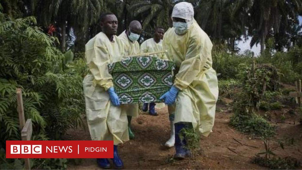 Why Ebola dey always come back