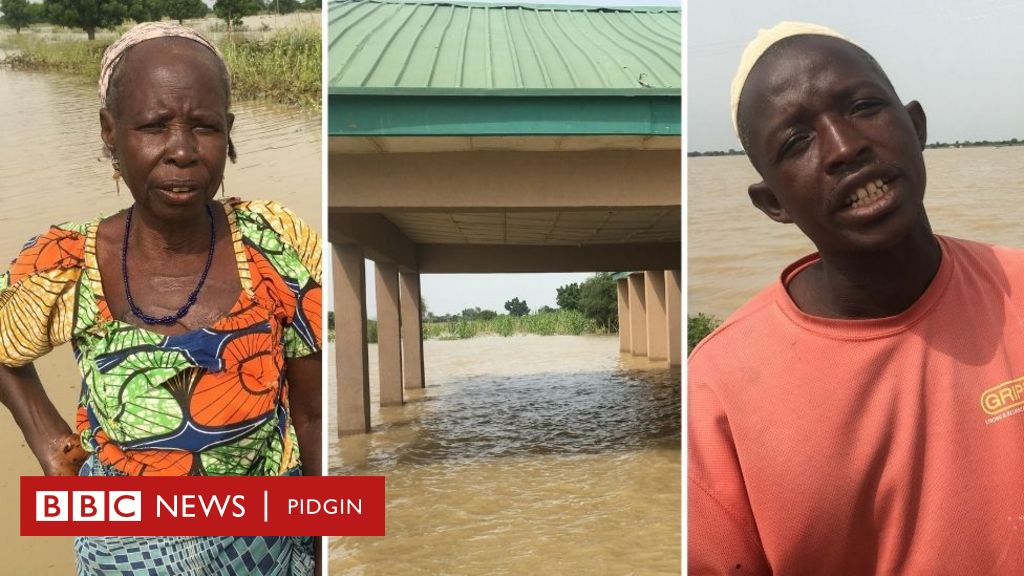 Fotos and tori of how flood cause ogbonge damage, scata houses, farms and cut off communities for Jigawa - BBC News Pidgin