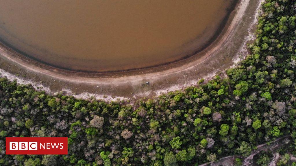 Por que Pantanal vive 'maior tragédia ambiental' em décadas