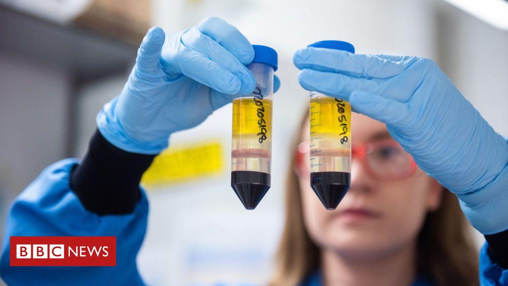 10 anos em 10 meses: como cientistas de Oxford criaram em tempo recorde um novo modelo de vacina contra o coronavírus