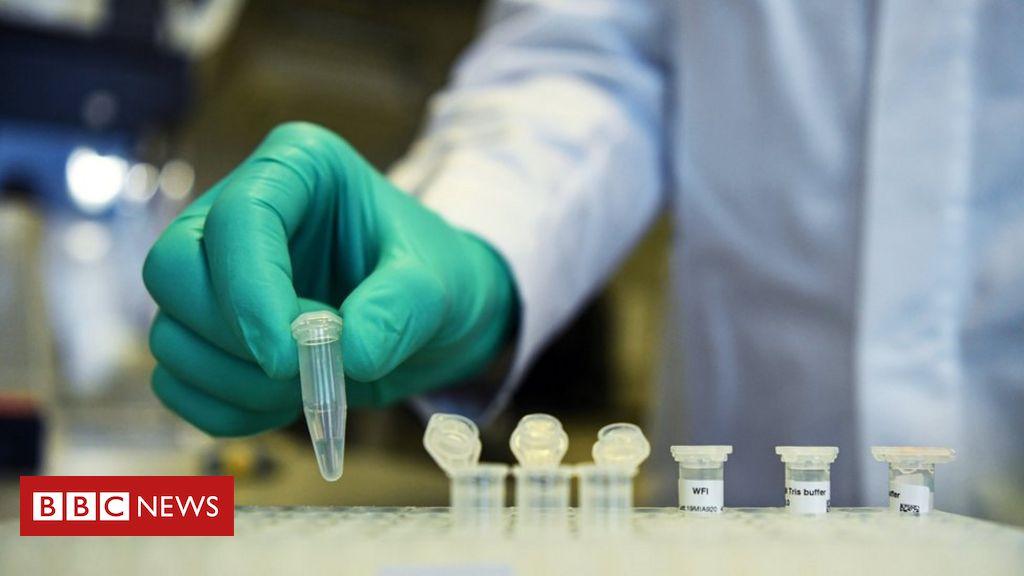 Resultado de imagem para Coronavírus: cientistas descobrem como o corpo combate a covid-19 Cientistas australianos disseram ter identificado pela primeira vez como o sistema imunológico combate a infecção pelo novo coronavírus, causador da doença covid-19