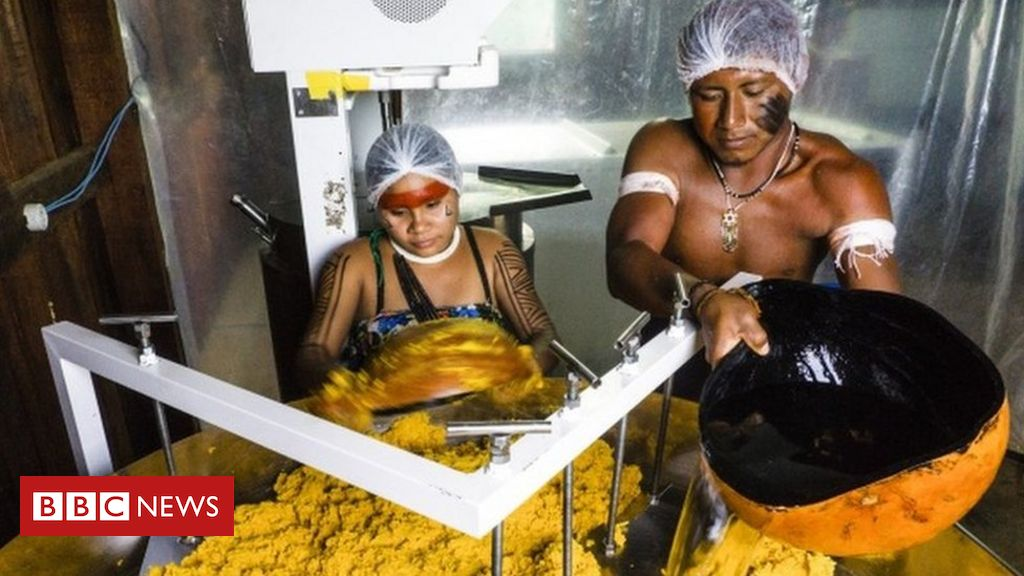 Os indígenas premiados na ONU por produtos que geram renda e mantêm floresta em pé