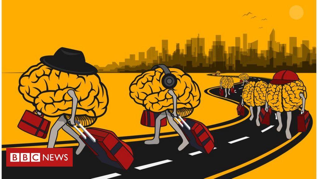 Resultado de imagem para evasão de cérebros bolsonaro