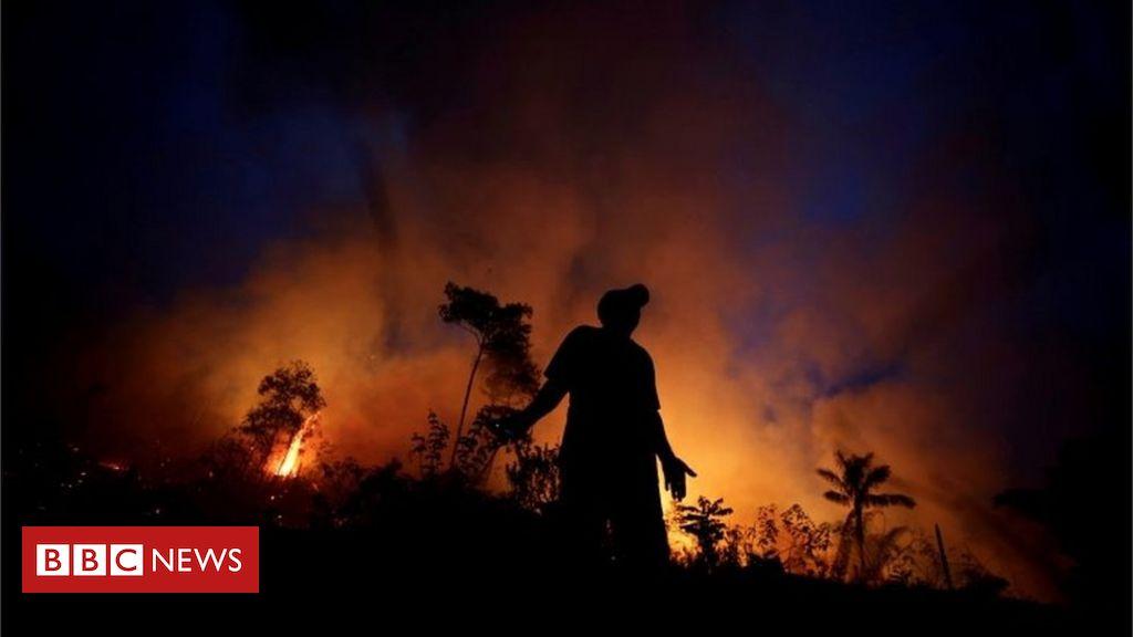 Amazônia: agricultores causam maioria das queimadas, e não índios e caboclos, diz cientista Carlos Nobre