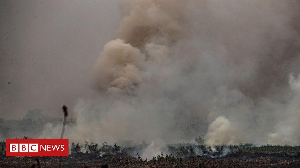 Chuva preta e dias escuros: como queimadas no Pantanal e Amazônia podem afetar outras regiões