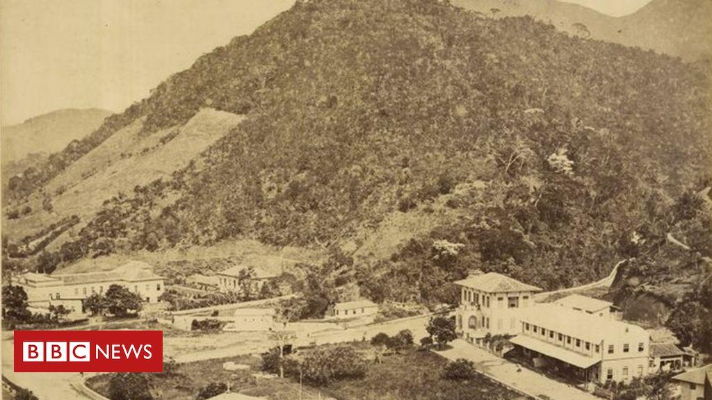 O tempo em que o Rio de Janeiro secou após destruir floresta por café