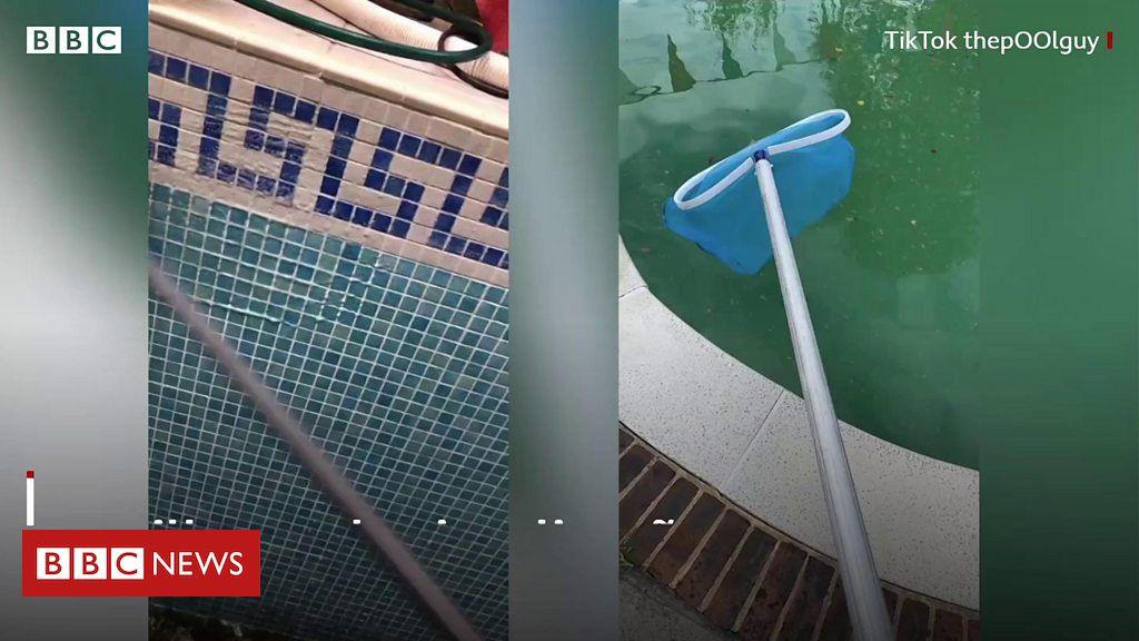 Por que milhões de pessoas estão assistindo a vídeos de limpeza de piscinas no TikTok - BBC News Brasil