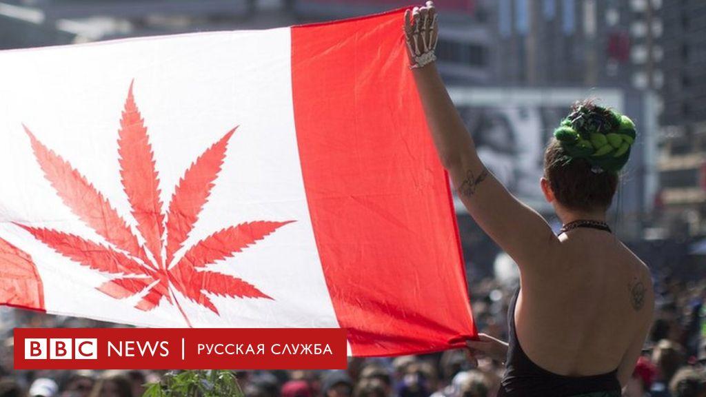 Про марихуану bbc фильм онлайн конопля