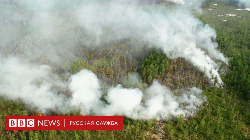 Лесные пожары в Якутии: Гринпис не ждет улучшения ситуации до середины  августа - BBC News Русская служба