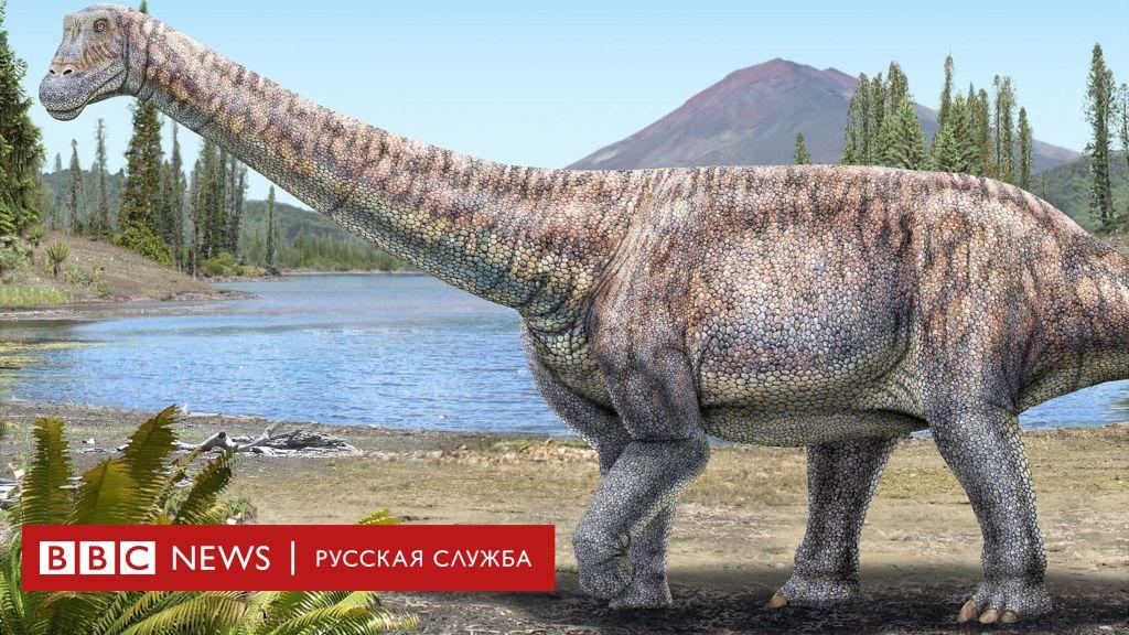 Ученые Чили утверждают, что нашли новый вид титанозавра