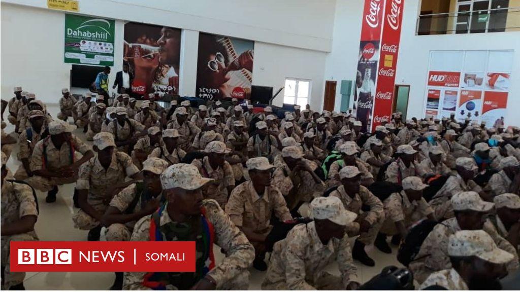 Jabhadda ONLF oo 20 sano kaddib gaartay Jigjiga - BBC News