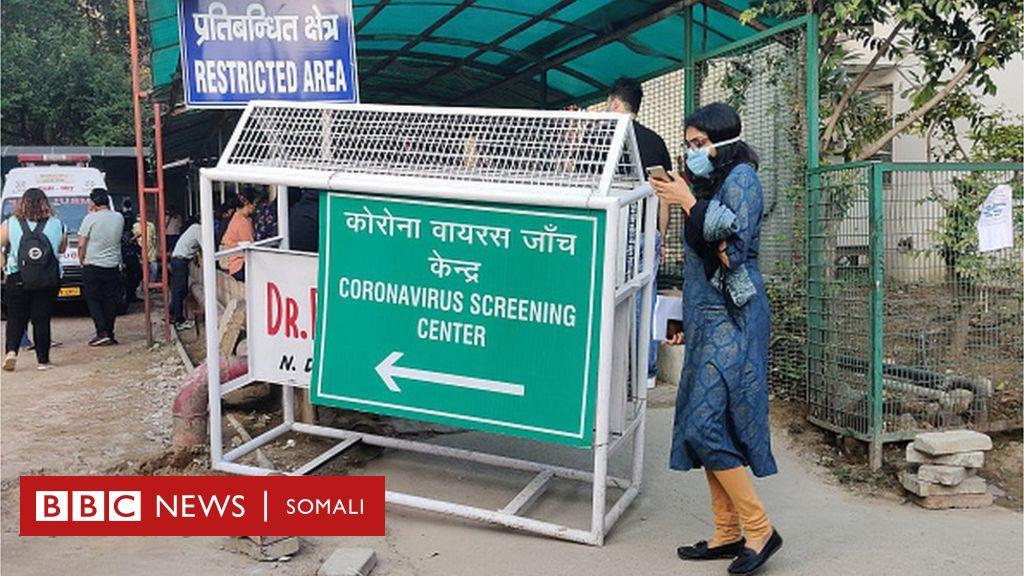 Hindiya: Haweeneydii ka dambeysay soo saaridda qalabkii ugu horreeyay ee baaritaanka xanuunka Coronavirus