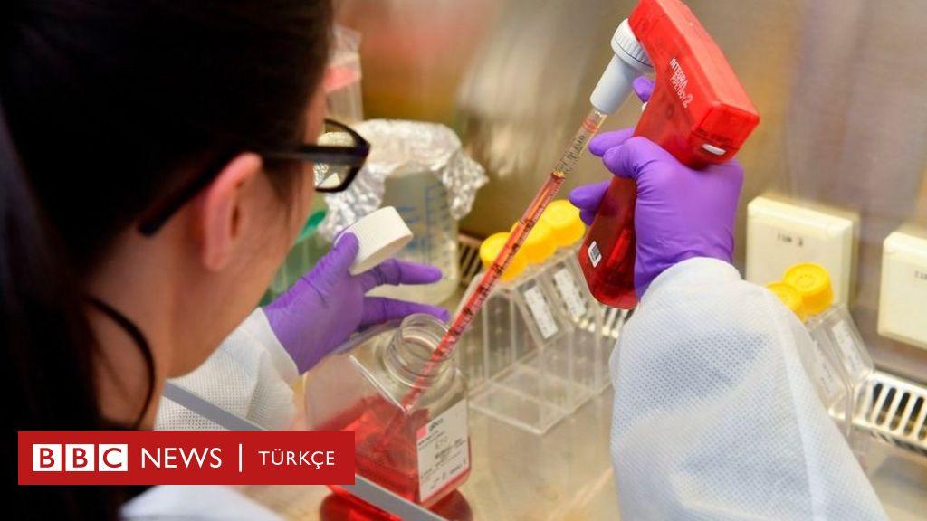 Dünyadaki bilinen en genç koronavirüs kurbanı Rachel '2 saat içinde fenalaşarak yaşamını yitirdi'