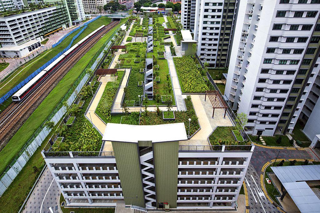 Roof Garden by Joseph Meng Huat Goh