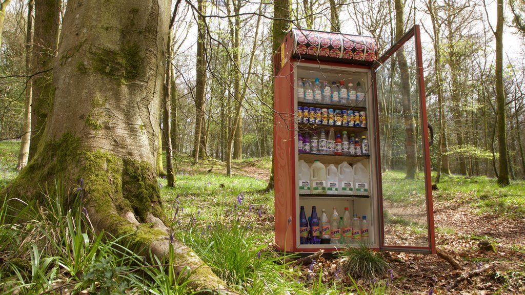 Forest vending machine, Forest of Dean
