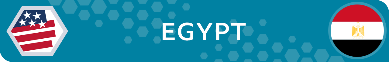 What the result means for Egypt - banner