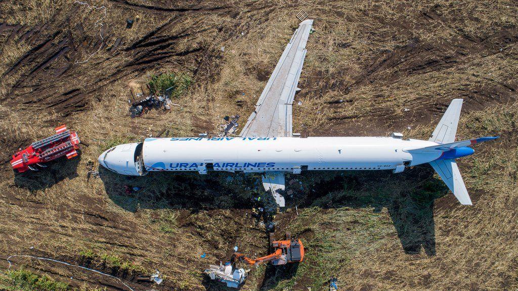 Фото дня: севший в кукурузном поле самолет начали разрезать на части