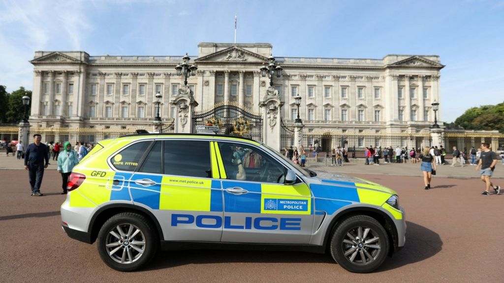 Man charged over Buckingham Palace incident