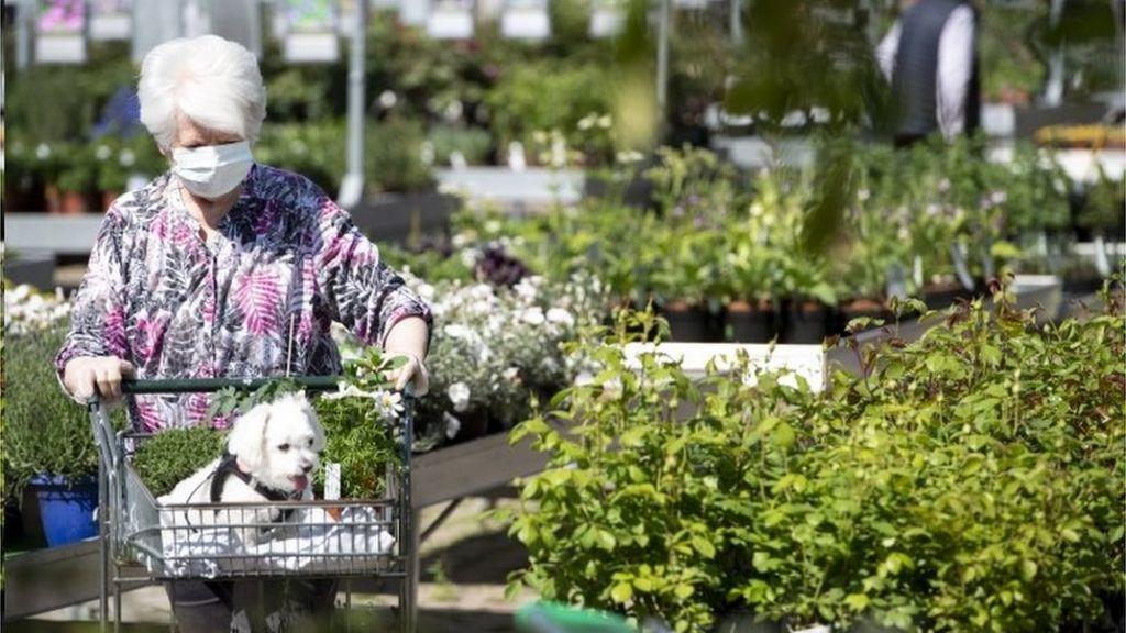 Coronavirus Garden Centres In England To Reopen Next Week Bbc News