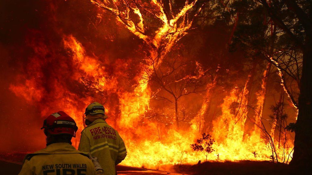 Fire fighters in front of a bushfire