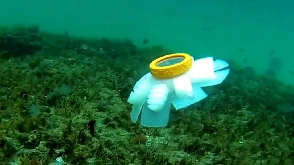 bbc.co.uk - Jellyfish robots to watch over endangered coral reefs