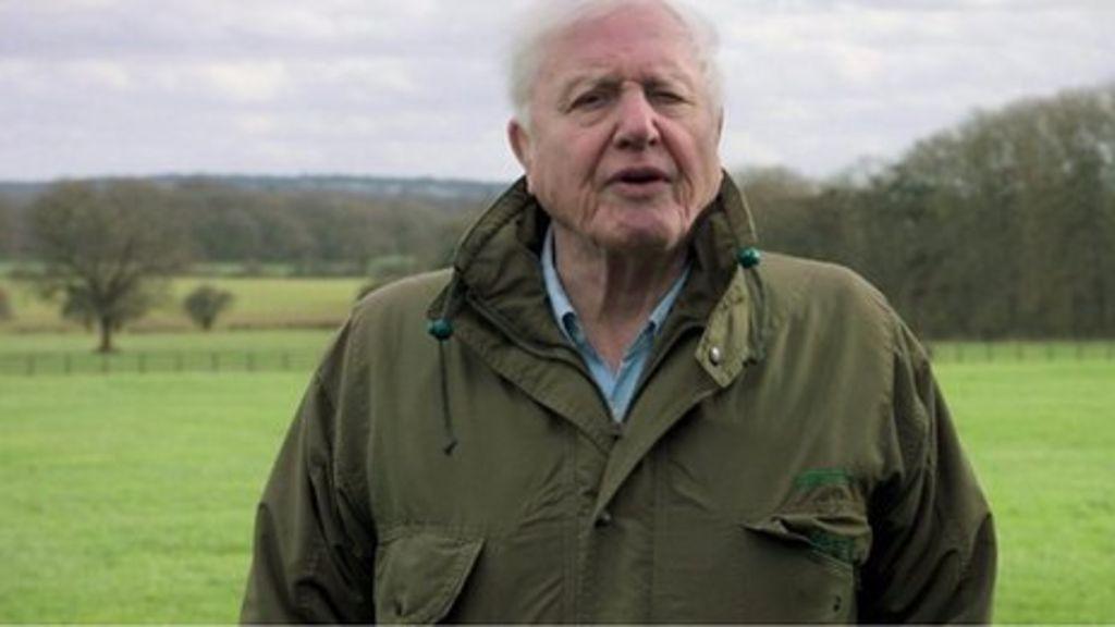 bbc.co.uk - Matt McGrath - Climate change: Sir David Attenborough warns of 'catastrophe