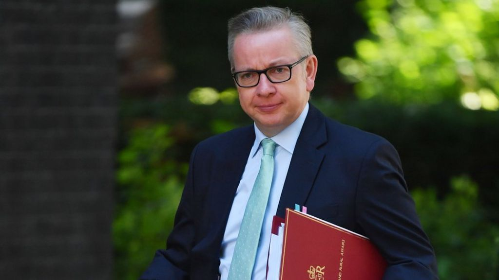 Farm subsidies 'must be earned' - Gove