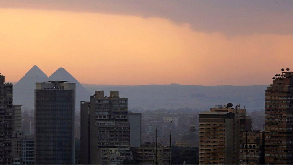 Egypt arrests 'organ trafficking ring' - BBC News