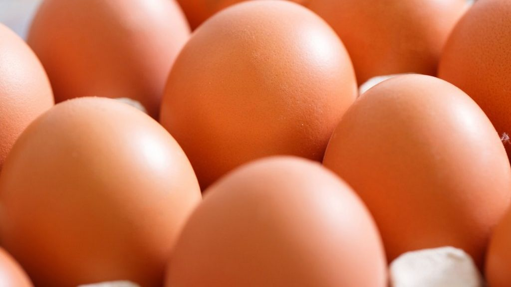 Contaminated eggs reached the UK