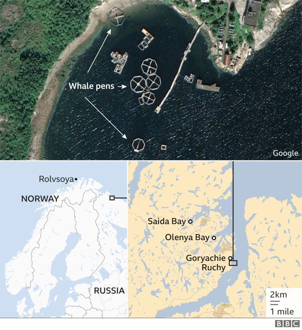 Maps showing parts of Norway and Russia, where whale pens can be seen on Google Earth
