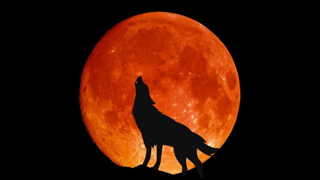 January 28th, 2021 Full Wolf Moon