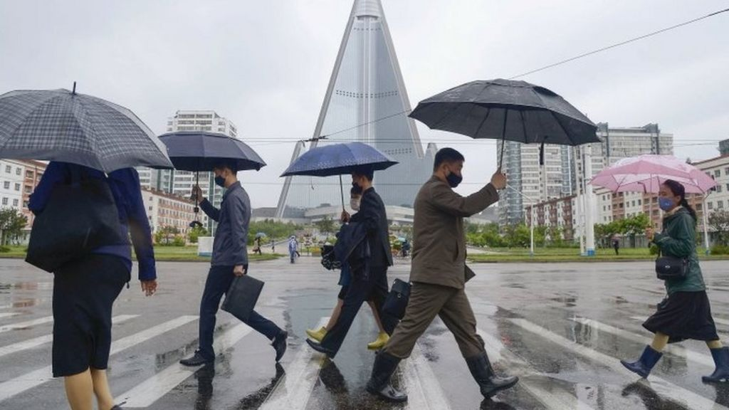 North Korea on alert over 'first suspected coronavirus case' - BBC ...