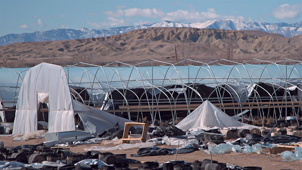 Hoop houses on the cannabis farms in Shiprock, New Mexico