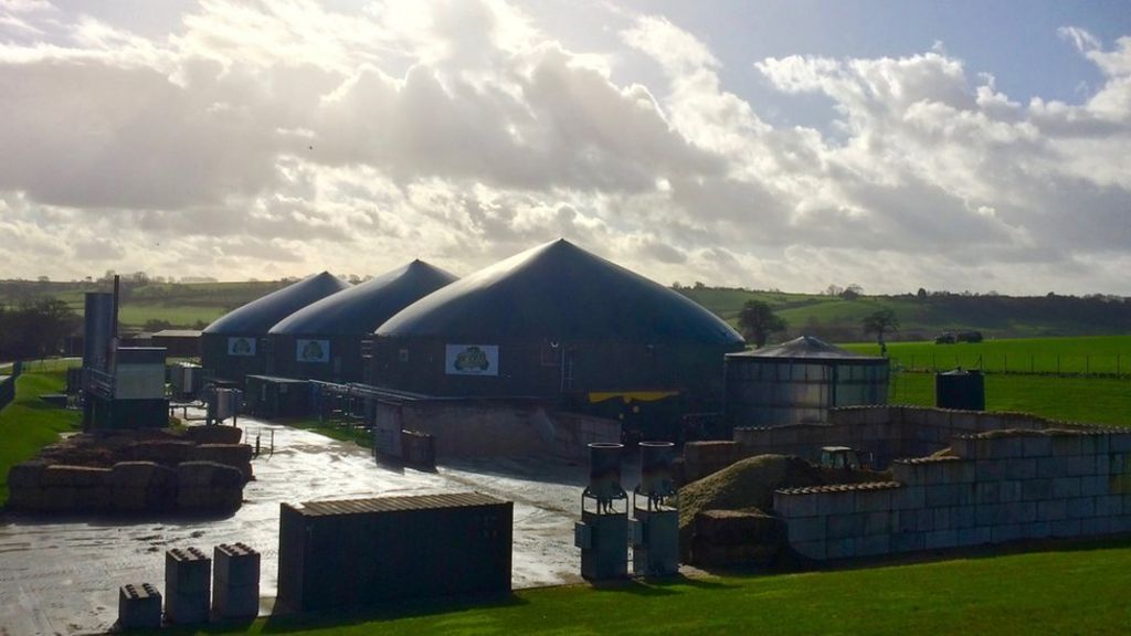 Powered by poo: Somerset dairy farm enjoys biogas boom - BBC News