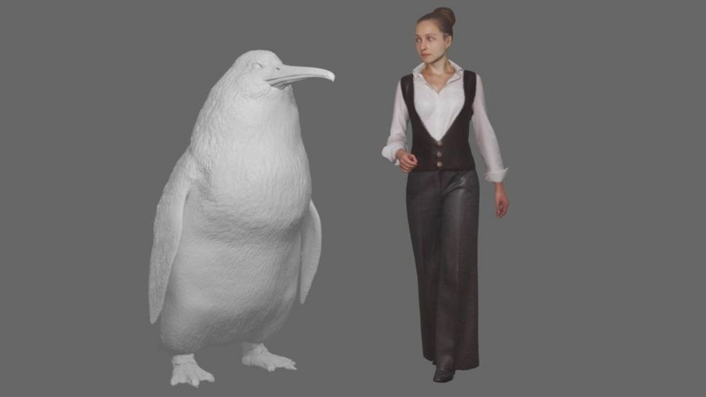Human Sized Penguin Lived In New Zealand Bbc News