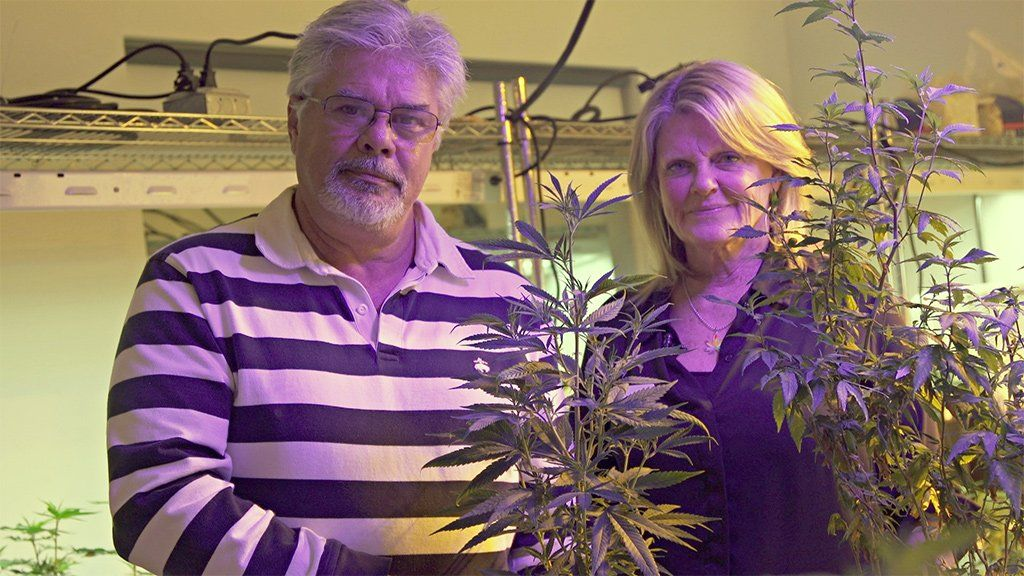 Jayne and Vic Grissom pose in their marijuana plant display room