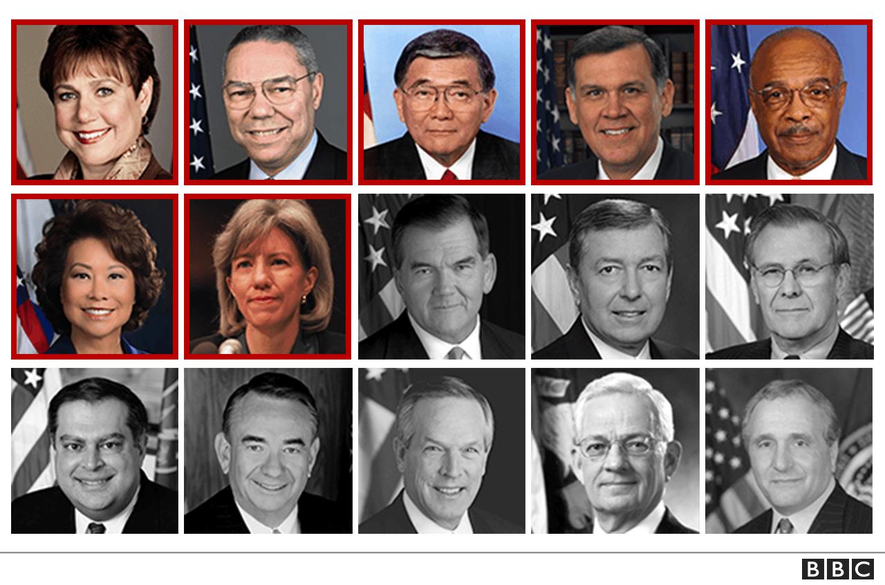 Bush cabinet