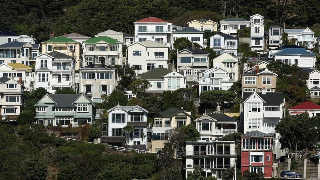 New Zealand Bans Sales Of Homes To Foreigners Bbc News