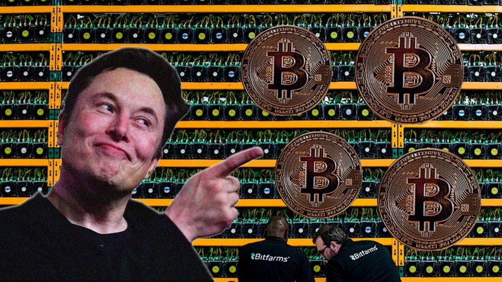 bitcoins newsround games