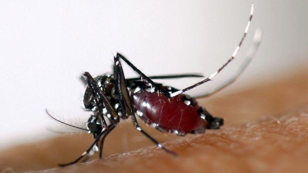 Philippines launches probe into dengue vaccine scare