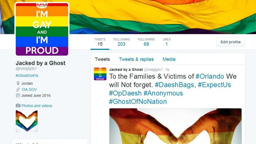 Anonymous fills IS Twitter accounts with gay pride messages