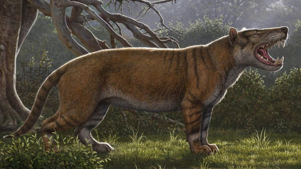 bbc.co.uk - Giant lion' fossil found in Kenya museum drawer