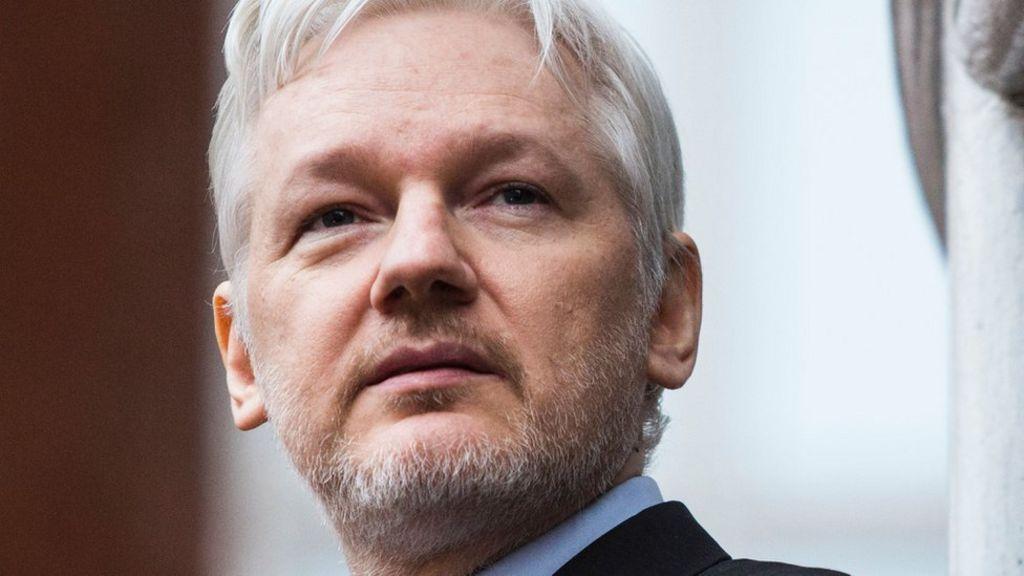 assange conspiracy essay help