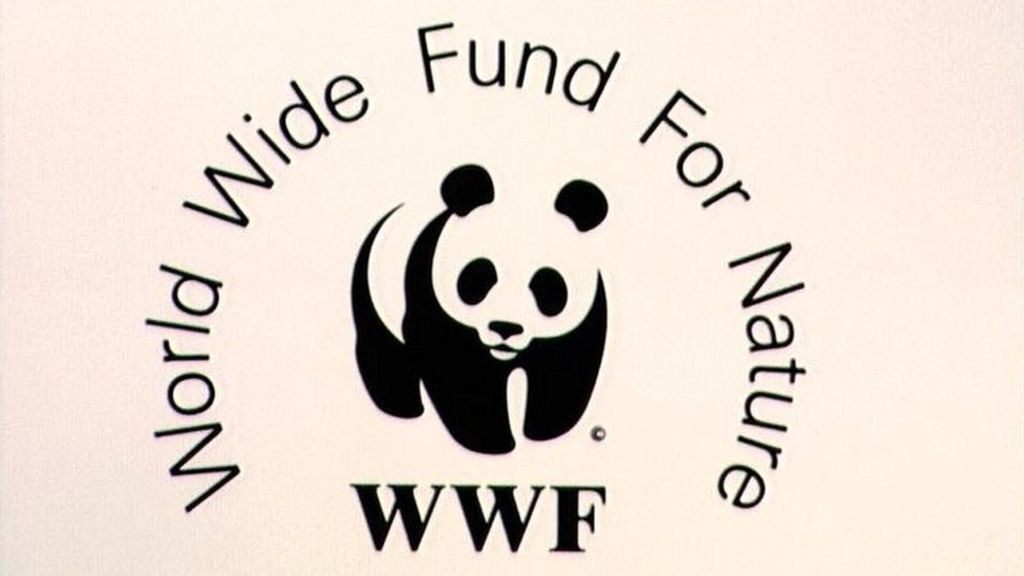 Wwf Accused Of Funding Guards Who Torture And Kill In Poaching War Bbc News